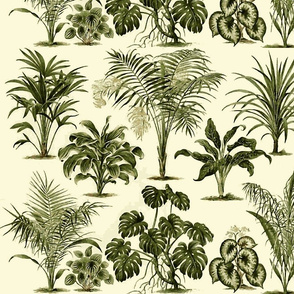 Jungle Palms