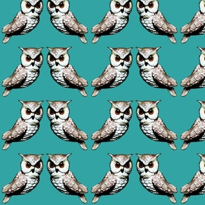 teal owls for sheets