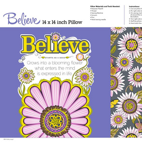 Believe_grey_Pillow_14x14_2