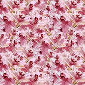 Rorchids_pink_bunch_12x12_shop_thumb