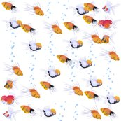Rrfish2_shop_thumb
