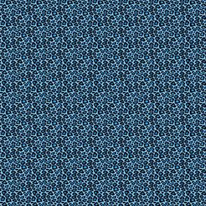 blueleopard