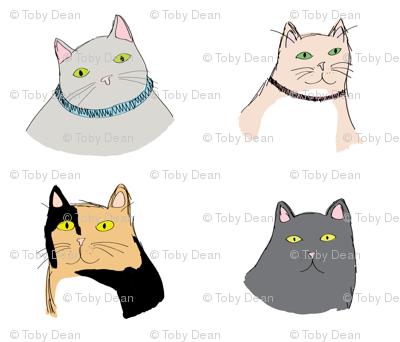fourcats1