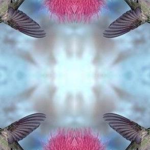 hummingbird-flowers-pink-Favim