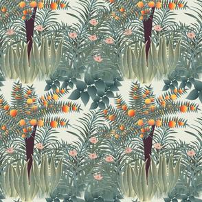 orange tree 1