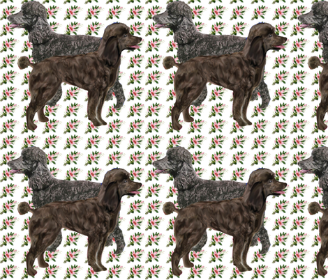 poodles on floral fabric fabric by dogdaze_ on Spoonflower - custom fabric