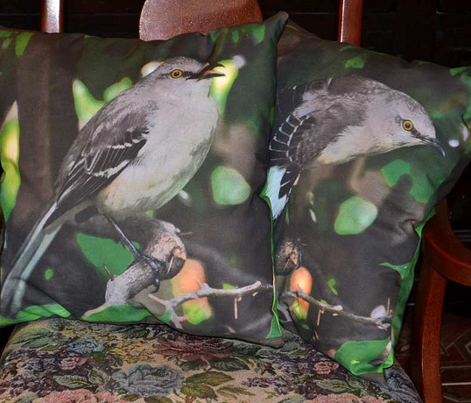 Mockingbird pillows