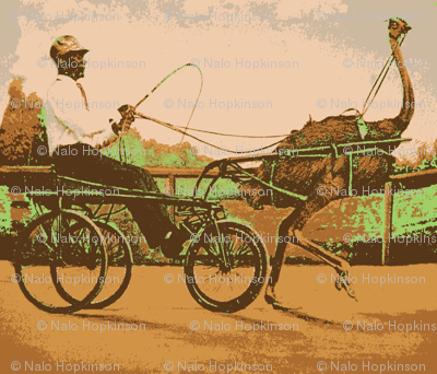 Ostrich Rider version