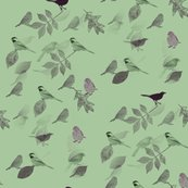 Rmd_birds_and_leaves_mint_seamless_shop_thumb