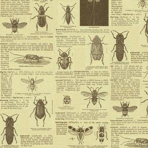 bugfabric2