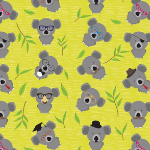 Incognito Koala (AKA Dropbear)