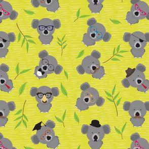 Incognito Koala (AKA Dropbear)