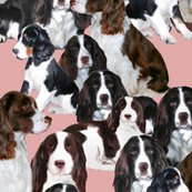 1738625_rspringer_spaniels_seamless_finished_shop_thumb