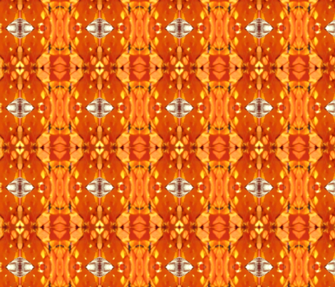 African Orange Abstract
