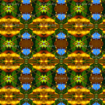 ForestKaleidoscope