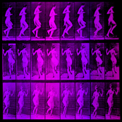 Dancing Lady, Semi-Nude, Violet Shades