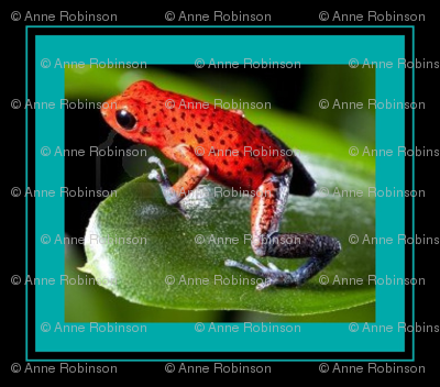 13222540-frog-red-strawberry-poisdart-frog-ed