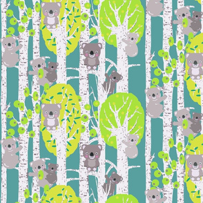 koalas in the trees