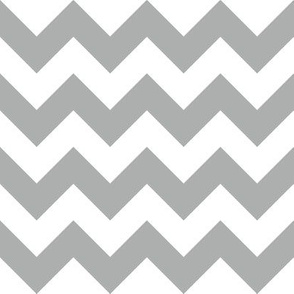 Zig Zag Chevron Silver