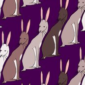 Rrabbits_shop_thumb