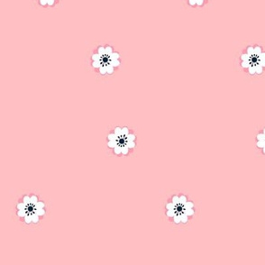 ranunculus_pink