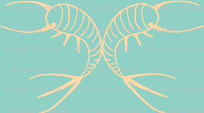 silverfishes aqua