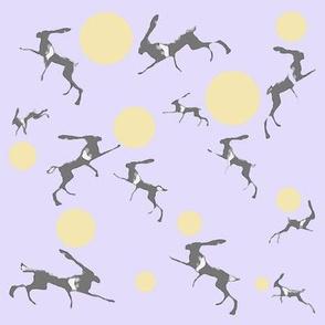 Moonstruck Hares