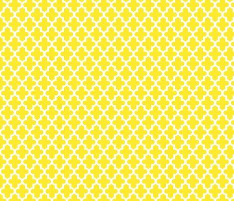 Rrmoroccan_yellow_shop_preview