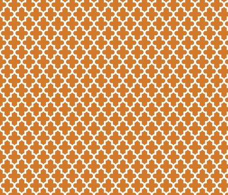 Rrmoroccan_burnt_orange_shop_preview