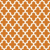 Rrmoroccan_burnt_orange_shop_thumb