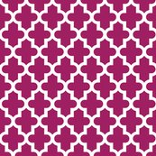 Rrmoroccan_berry_purple_shop_thumb