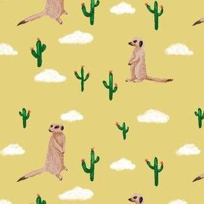 Meerkat Rodeo