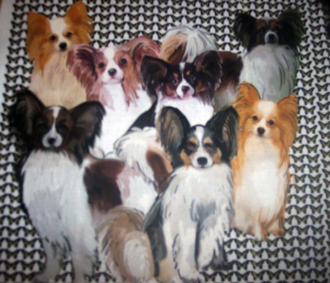 Papillon Group Fabric