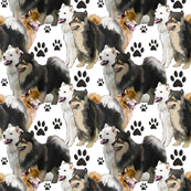 Finnish  Laphund dog fabric