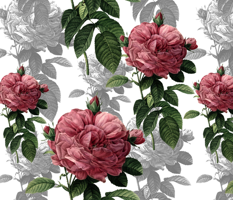 Redoute' Roses ~ Pink and Grey fabric by peacoquettedesigns on Spoonflower - custom fabric