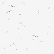 seagulls_10