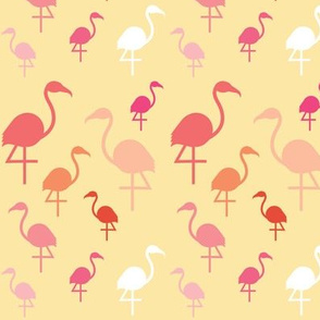 Flamingos on Lemon