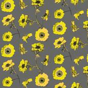 anemones_yellow
