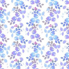 Blueberries in lavendar and blue
