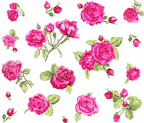 shabby chic roses larger scale fabric by katarina on Spoonflower - custom fabric