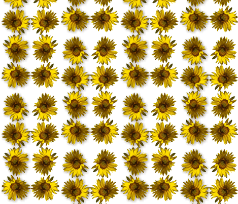 sunflower2 fabric by tat1 on Spoonflower - custom fabric