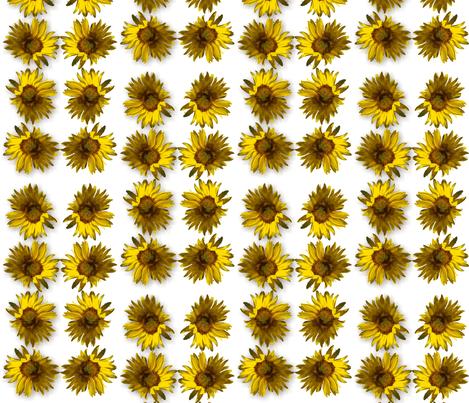 sunflower2 fabric by tat1 on Spoonflower - custom fabric