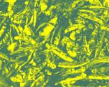 R800px-dry_chili_pepper6_ed_thumb