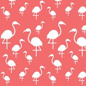 Rrrrflamingo_white_on_dark_coral
