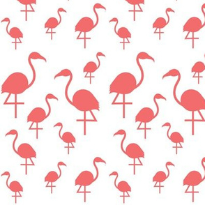 Flamingos in Dark Coral on White