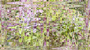 """Spring Garden"" fabric by jeanfogelberg on Spoonflower - custom fabric"