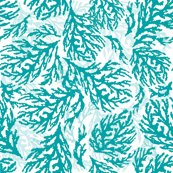 Rrcoral_fan_new_repeat_feb_17-9_at_300dpi_turquoise_shop_thumb