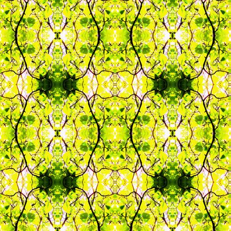 Spring Catalpa Trees fabric by ravynscache on Spoonflower - custom fabric