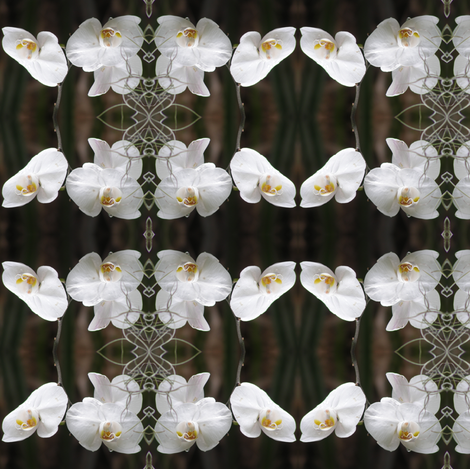 White Orchids fabric by ravynscache on Spoonflower - custom fabric