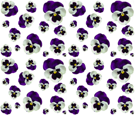PURPLE PANSY fabric by bluevelvet on Spoonflower - custom fabric
